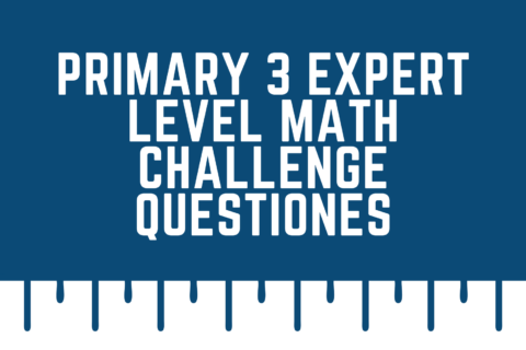Primary 3 Expert Level Math Challenge Questiones